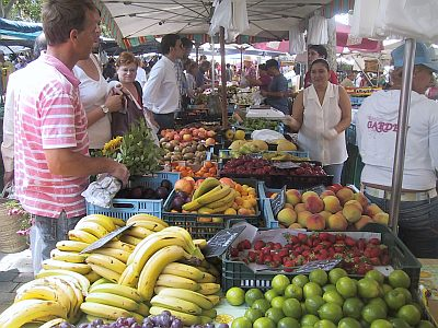 Rejse til Mallorca Spanien på marked
